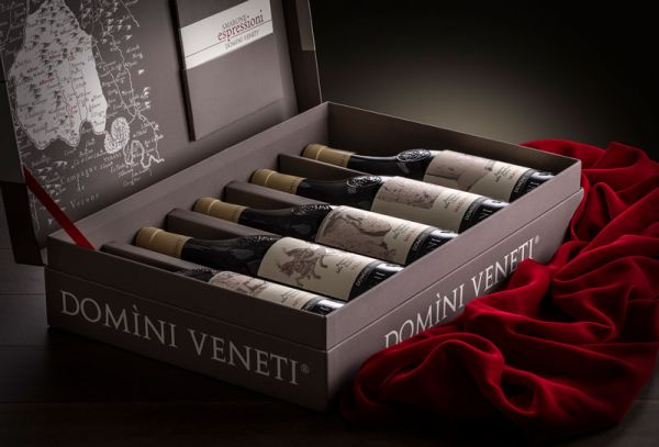 Flaschen-Set im Koffer mit 5 Curs des Amarone della Valpolicella / Domini Veneti