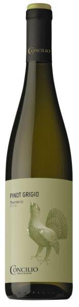 Pinot Grigio Trentino 0,75l 2017 13% Alc./Concilio